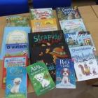 Aktualizácia a doplnenie knižného fondu odbornou literatúrou pre deti, mládež a dospelých